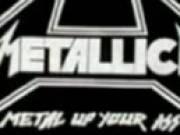 Intervista concerto Metallica