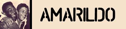 Amarildo – Campione Internazionale di Calcio