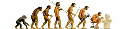 Somiglianze tra l'uomo e la scimmia?